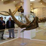 Türkiye'nin İlk Zooloji ve Doğa Müzesi Gaziantep'te