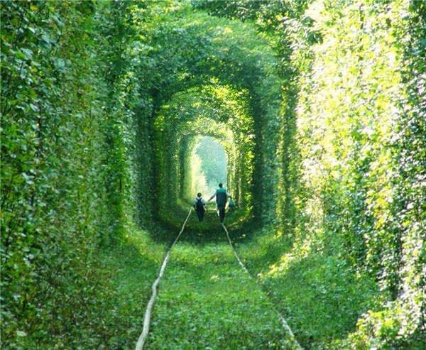 Ukrayna Aşk Tüneli Nerede, Nasıl Gidilir