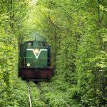 Ukrayna Aşk Tüneli.
