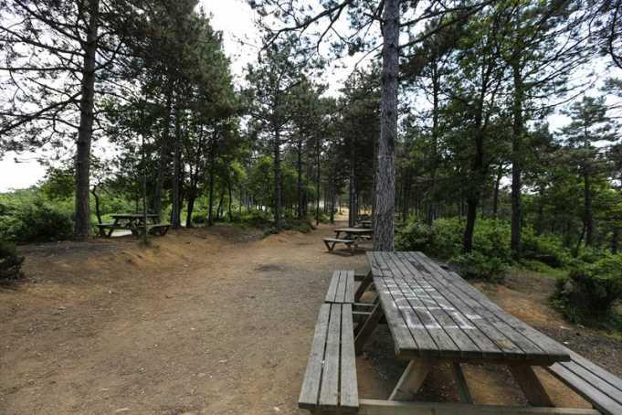 Kayaşehir Piknik Alanı Nerede, Nasıl Gidilir ve Giriş Ücreti