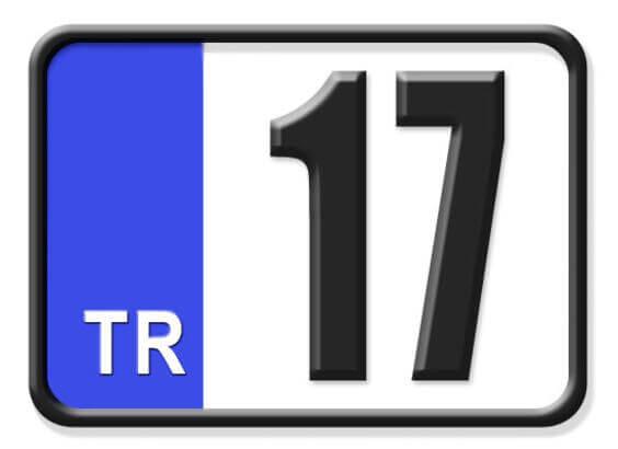 17 Nerenin Plakası