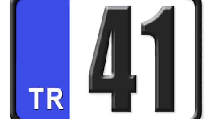 41 Nerenin Plakası