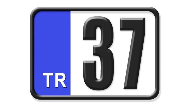 37 Nerenin Plakası, Kastamonu Plakası