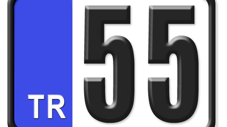 55 Nerenin Plakası, Samsun Plakası