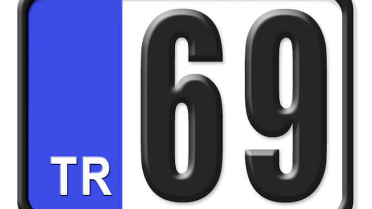 69 Nerenin Plakası, Bayburt Plakası