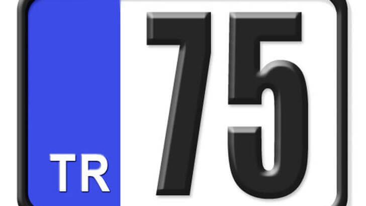 75 Nerenin Plakası, Ardahan Plakası